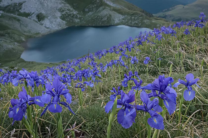 Acherito, el ibón más occidental de los Pirineos