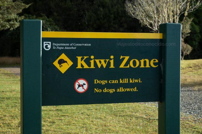 Kiwi Zone Nueva Zelanda